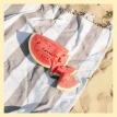 Cultivo del melón y sandía... frutas del verano