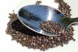 Las semillas de chía, un alimento completo