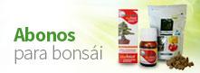 Abonado-bonsai