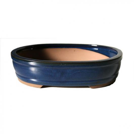 Tiesto Java ovalado azul