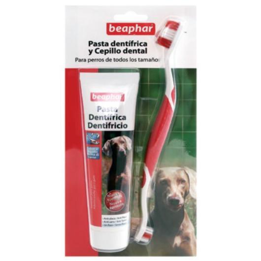 Pack dental  pasta + cepillo