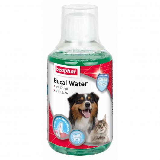Bucal water, 250 ml