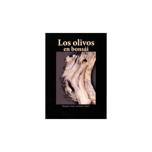 Los olivos en bonsái