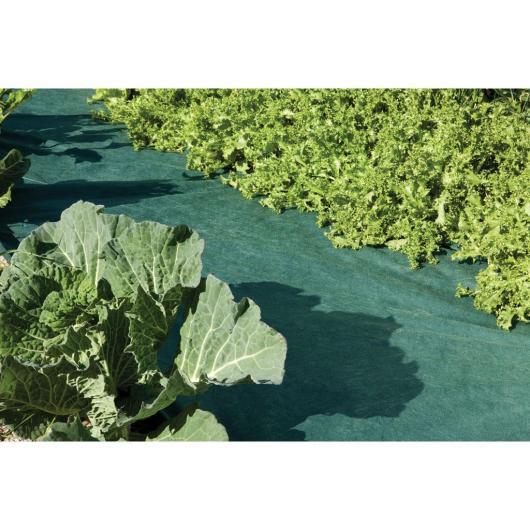 Malla anti-hierbas verde 105 g/m2