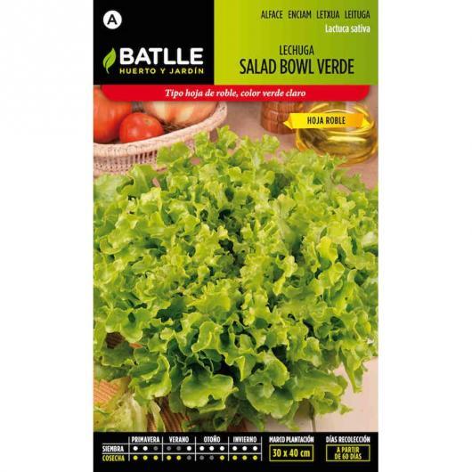 Semillas de  Lechuga Salad Bowl Verde