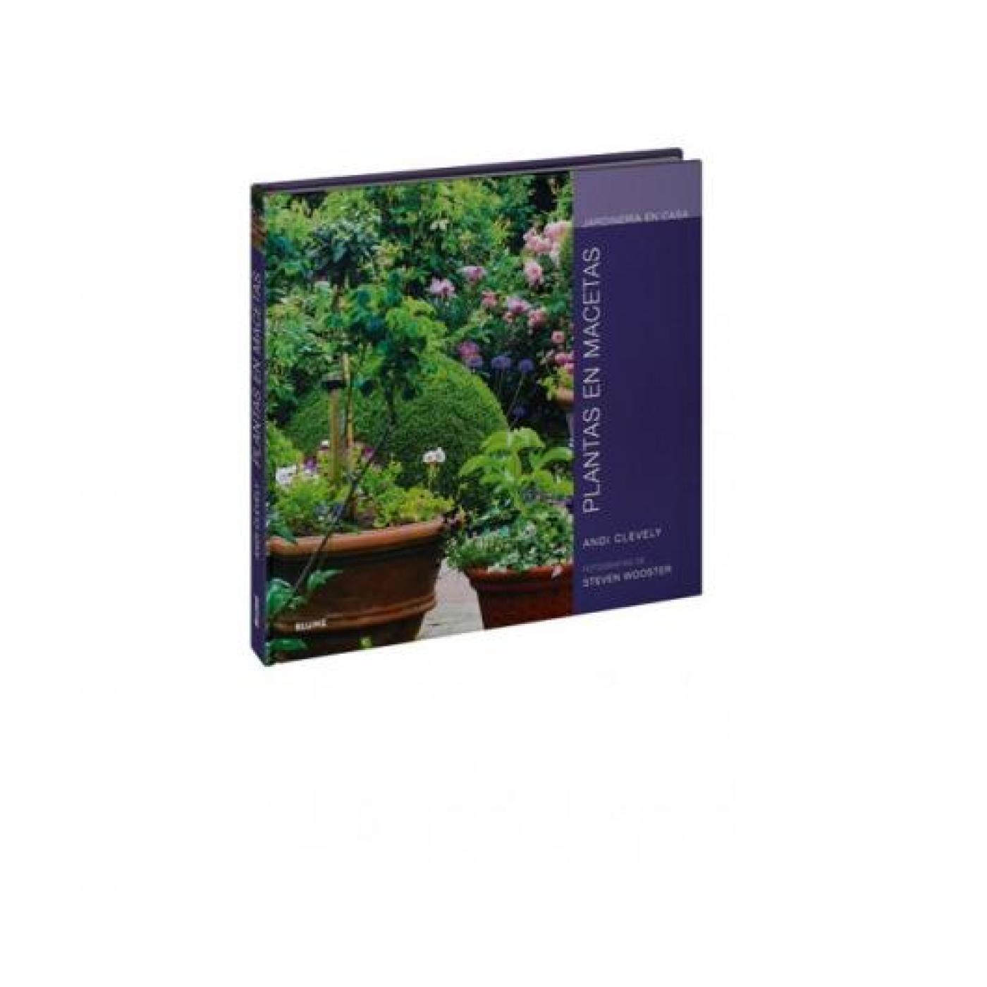Jardiner a en casa plantas en macetas por 14 90 en - Jardineria en casa ...