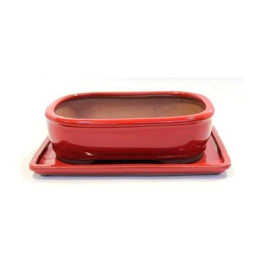 Pot à bonsaï Basic ovale rouge 25 cm + plateau
