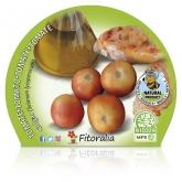 Pendurar ecológica pot diâmetro 10,5 centímetros de mudas de tomateiro