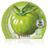 Eco Green Zebra tomate pote de mudas 10,5 centímetros de diâmetro