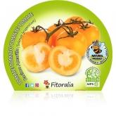 Grupo Ecológico de mudas de tomateiro Pot amarelas 10,5 centímetros de diâmetro