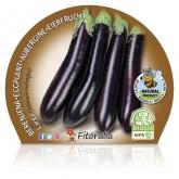 Eco Berinjela Mudas Long Black pot diâmetro 10,5 centímetros