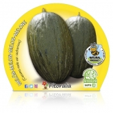 Pot mudas Ecológica Melon Sapo Pele 10,5 centímetros de diâmetro