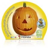Halloween abóbora mudas ecológica pot diâmetro 10,5 centímetros