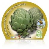 Plantel ecológico de Alcachofra 10,5 centímetros de diâmetro