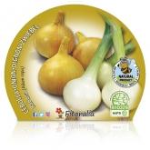 Slug Onion pote de mudas ecológica 10,5 centímetros de diâmetro