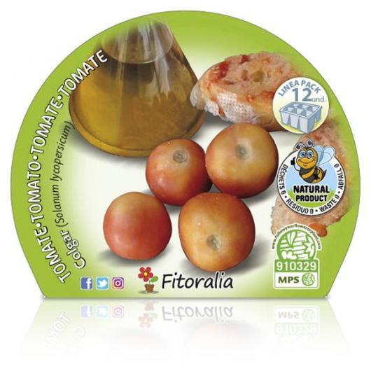 Plantón ecológico de   Tomate Colgar Pack 12 ud. 34x32mm