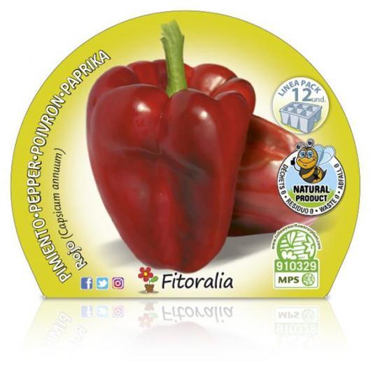 Plantón ecológico de  Pimiento Rojo Pack 12 ud. 34x32mm