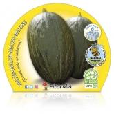 Mudas ecológica Sapo Melon Skin Pack 6 ud.