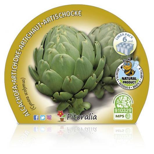 Plantón ecológico de  Alcachofa Pack 6 ud. 54x43mm