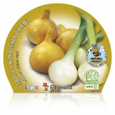 Slug Onion mudas pacote ecológico 12 unidades.