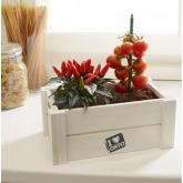 Caixa horta verduras Easy Orto