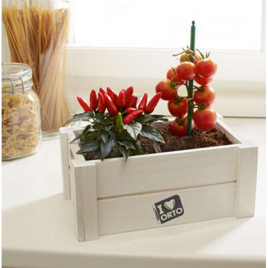Caja huerto verduras Easy Orto
