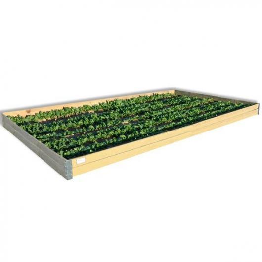 Scatola per coltivazione di legno 450 x 150 cm