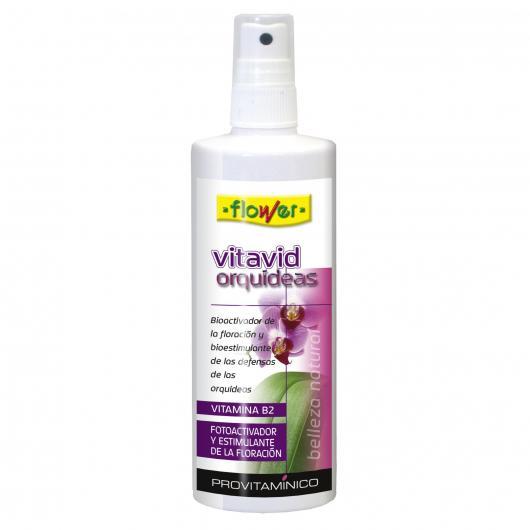 Vitavid Orquídeas