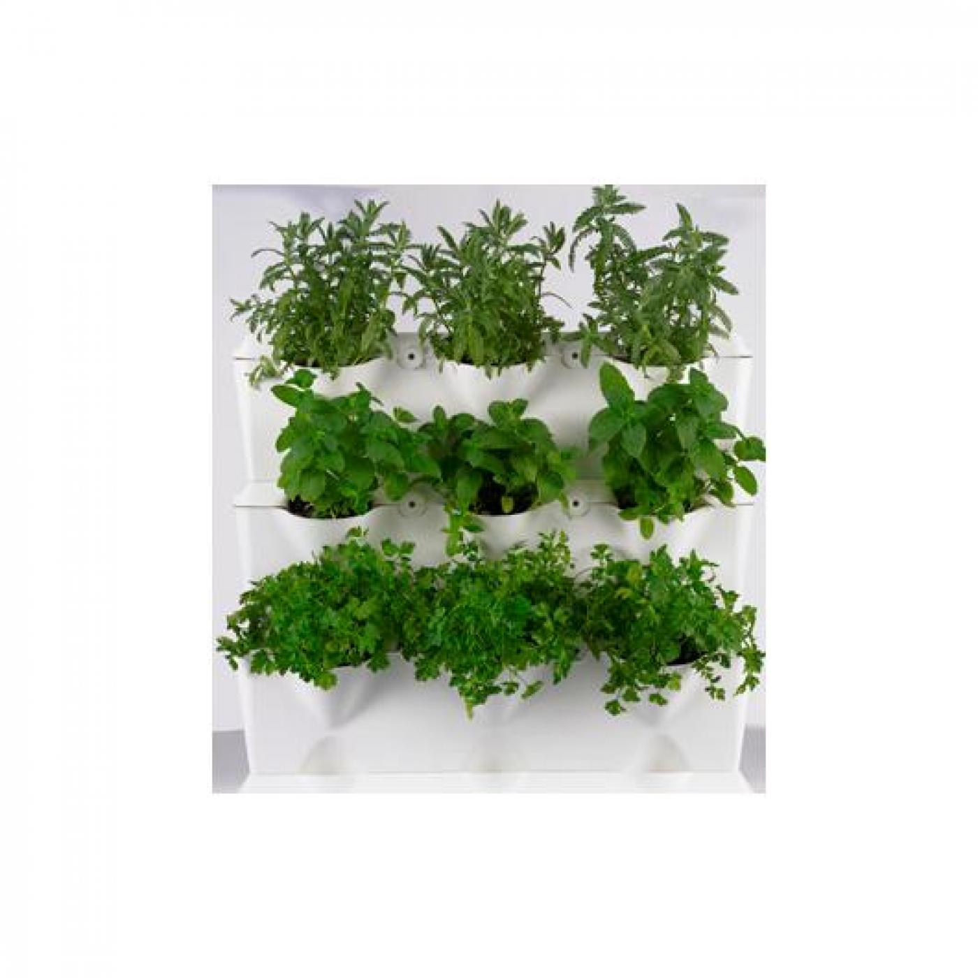 Jard n vertical minigarden blanco por 49 95 en planeta for Jardin 95