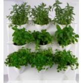 Giardino verticale minigarden bianco