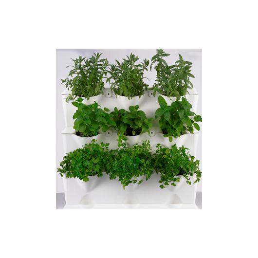 Jardin vertical minigarden blanc