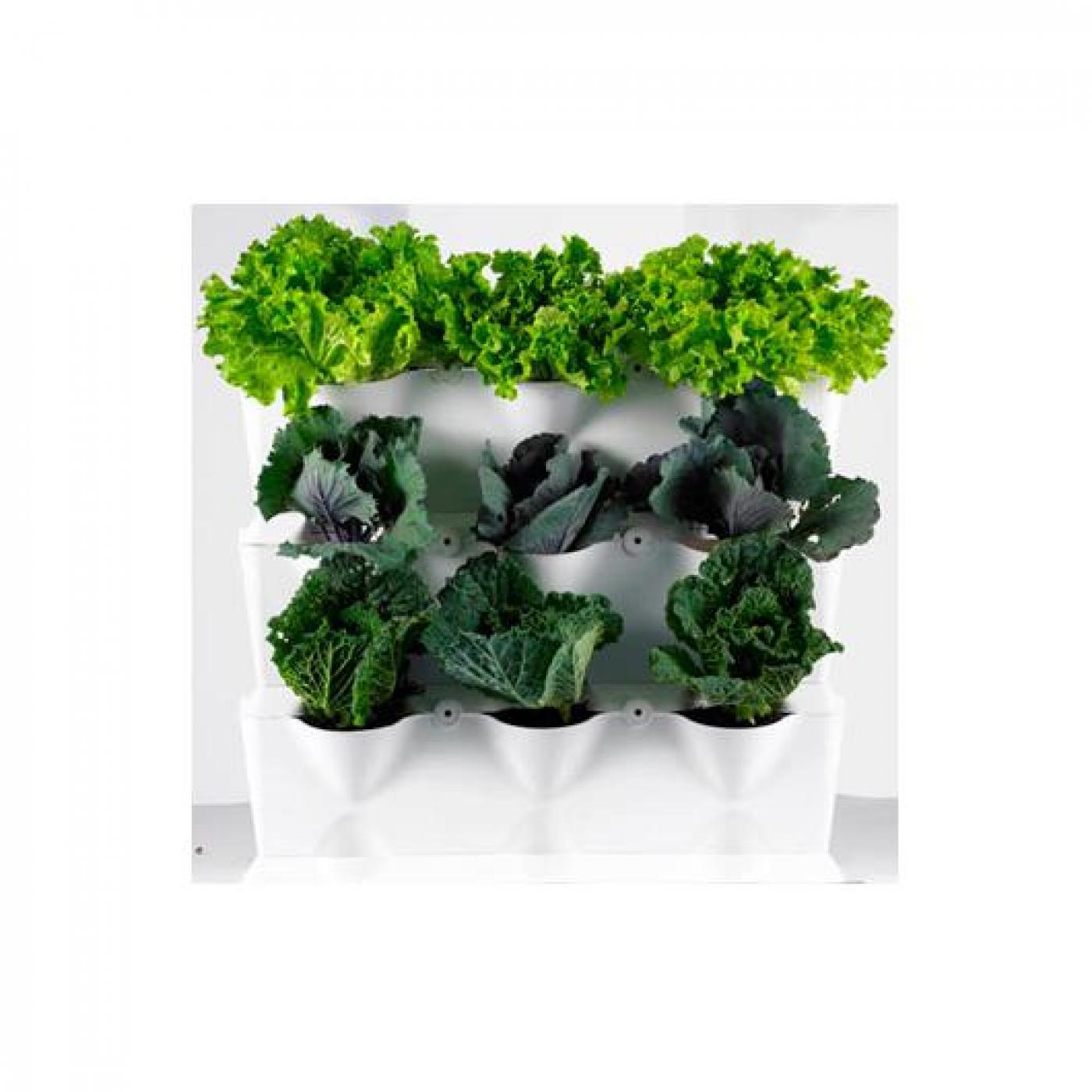 jardim vertical venda:Jardím vertical minigarden branco por €51,45 em Planeta Huerto