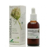 Soria Natural Extracto de Angelica, 50 ml