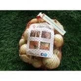 Bolsa de Bulbos de Cebolla de Calçots 2 Kg
