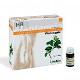Plantaggio HB Derbós, 20 Viales de 10 ml