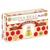 REINA REAL PLUS 20 AMP 10ML