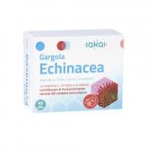 Gargola Echinacea Sakai, 45 gélules végétales
