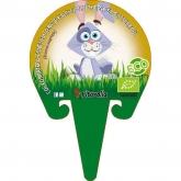 Plantón ecológico de Col Forrajera especial conejos pack 6 ud. 54x43mm