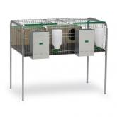 Rabbit hutch for 2 females (Silleda model)