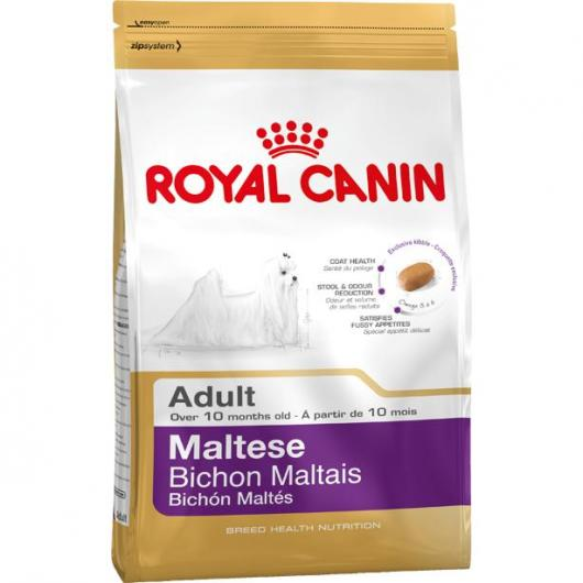 Royal Canin Bichon Maltais Adulte