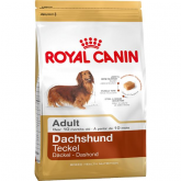 Royal Canin TECKEL ADULTO