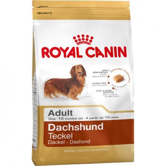 Royal Canin Teckel Adulte