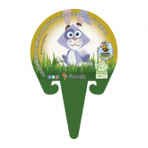 Plantón ecológico de Col Forrajera especial conejos maceta 1 L