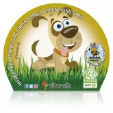 Mudas em vaso ecológico grama para cães 1L