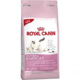Royal Canin Mamma e Cucciolo Gatto