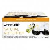 Purificador eco Fruta de la Pasión Attitude, 227 g