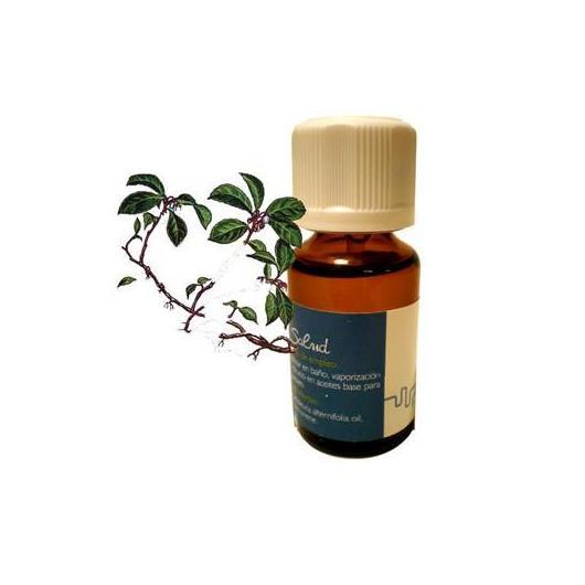 Aceite esencial 'Wintergreen' Inkanat