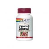 Equinacea Goldenseal Solaray, 60 capsule