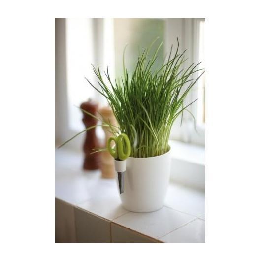 Vaso Bruxelles herbs Tutto in uno Elho