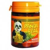Panda Real Integralia